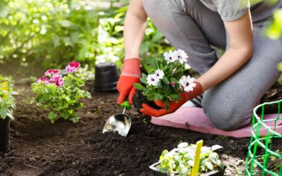 Gardening Is The Ultimate Workout